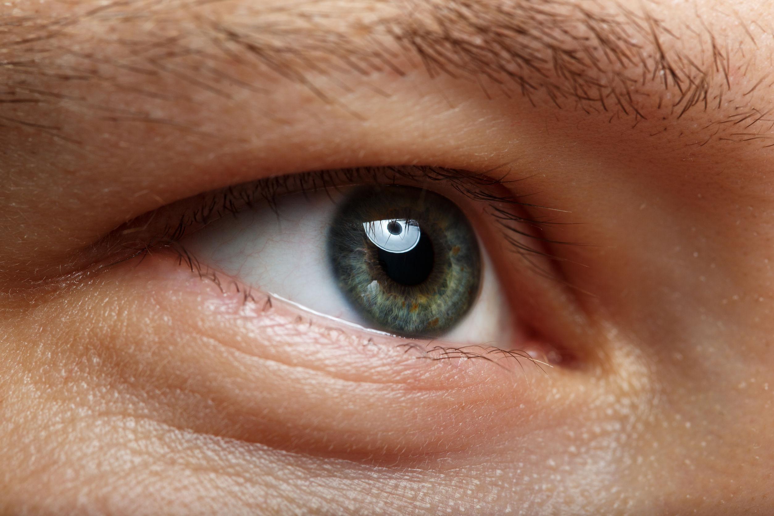 Gros plan sur l'oeil droit d'un homme aux yeux verts